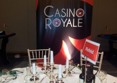 Casino Royale Pop up Banner 2